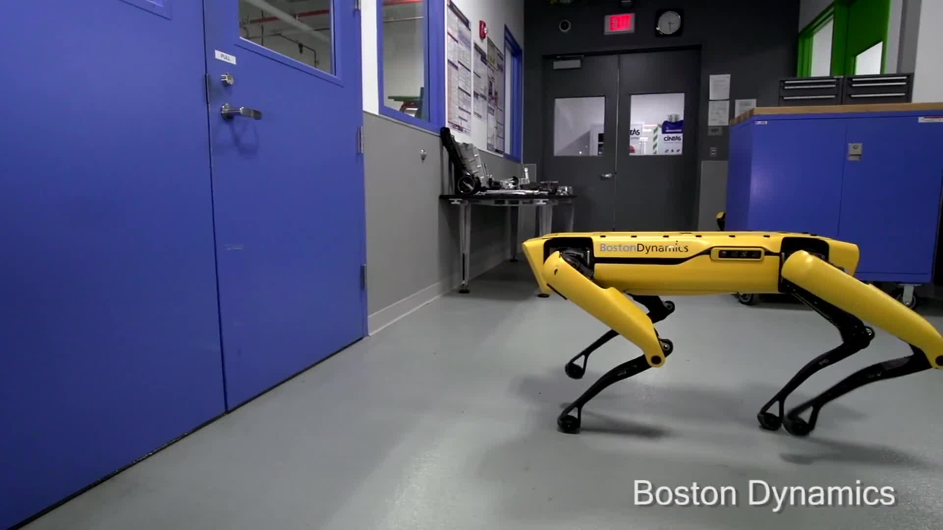 Long neck doggo helps his friend get through the door