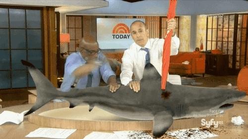 Step brothers shark week gif