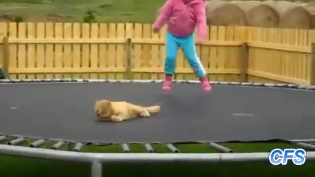 Jumping on trampoline gif