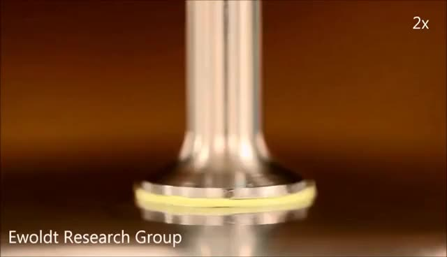 Watch and share Rheometer Octopus In Oscillation GIFs on Gfycat
