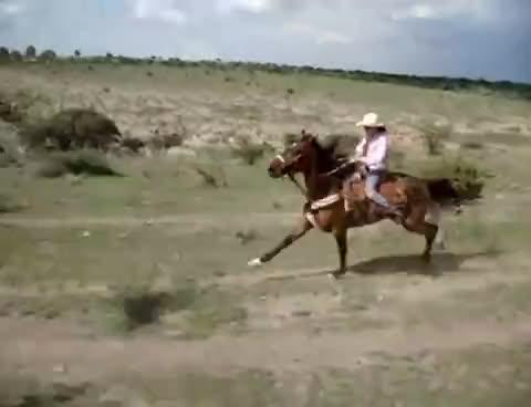Racing, cowboys, Racing cowboys GIFs