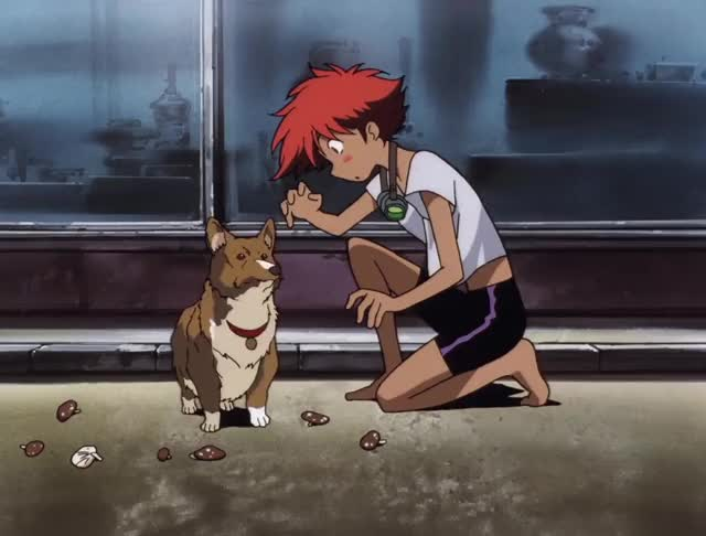Watch this cowboy bebop nope GIF by Hanna (@hannax) on Gfycat. Discover more HighQualityGifs, cowboy bebop, nope GIFs on Gfycat