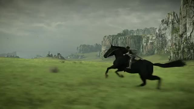 Watch SHADOW OF THE COLOSSUS Majestic Agro GIF by Kaneda18 (@kaneda18) on Gfycat. Discover more Agro, Bluepoint Games, Game, Horse, PS4, Shadow of the Colossus, Video Game GIFs on Gfycat