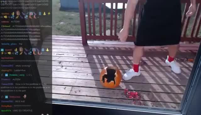 Watch and share PUMPKIN CARVING WITH TYLER1 GIFs on Gfycat