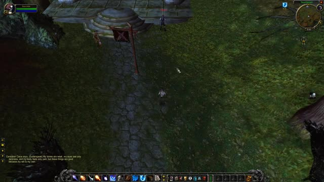 Watch and share Leeway - AOE Vs Running GIFs by Dey :[ on Gfycat