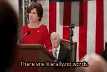 Watch and share Veep Nowords GIFs on Gfycat