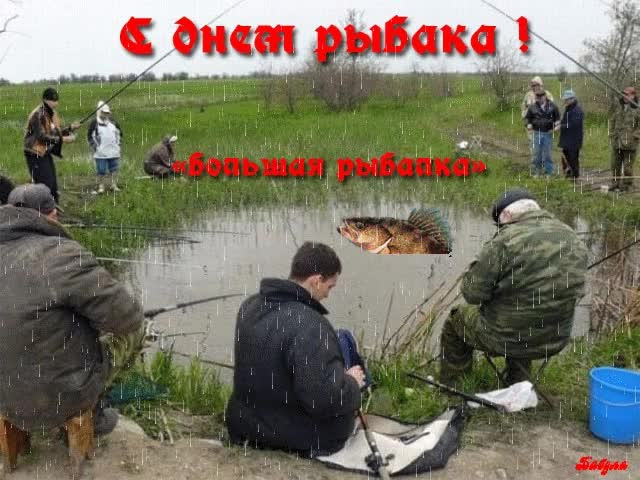 Watch and share Рыбак GIFs on Gfycat