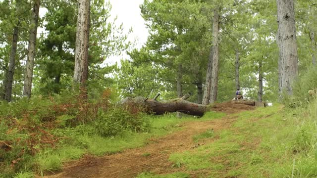 Watch and share Mountain Biking GIFs and Danny Macaskill GIFs on Gfycat