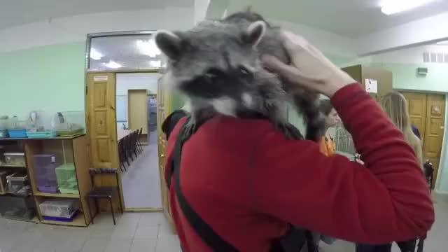 Watch Video by maksimbutusov GIF by Koleandra (@koleandra) on Gfycat. Discover more related GIFs on Gfycat