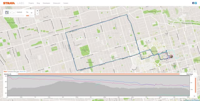 Watch and share Terry Fox Run - Strava Lab GIFs by botyokel on Gfycat
