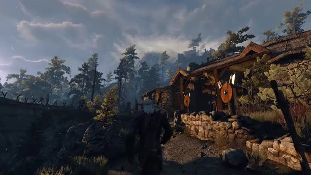 Watch witcher GIF by @barrad on Gfycat. Discover more witcher GIFs on Gfycat