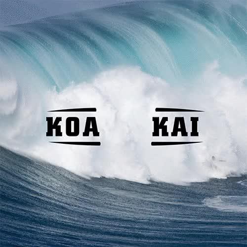Watch and share Koa Kai GIFs on Gfycat