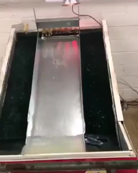 Watch and share Ducklings Having A Blast On A Little Water Slide GIFs by tothetenthpower on Gfycat