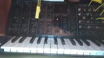 Watch and share Soundhog's Mini Eggs Sudden Drama GIFs on Gfycat