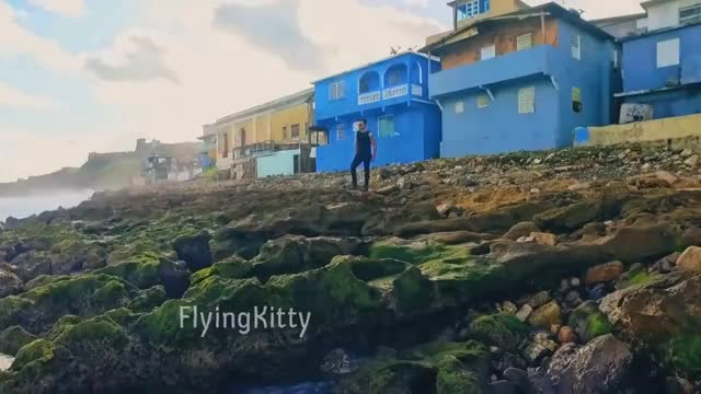 Watch and share Flyingkitty GIFs on Gfycat