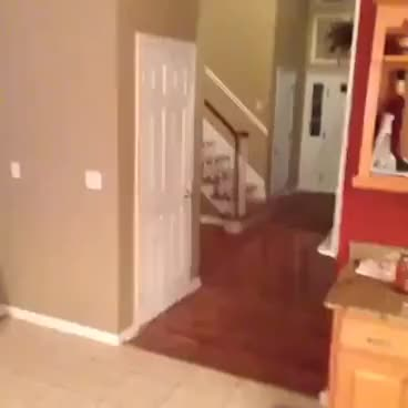 Watch Ghost Fail, Prank Fail GIF on Gfycat. Discover more Ownage, epic, lol, noob, owned GIFs on Gfycat