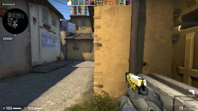Watch and share CS P250 REPORT PLZ GIFs by gr1pen on Gfycat