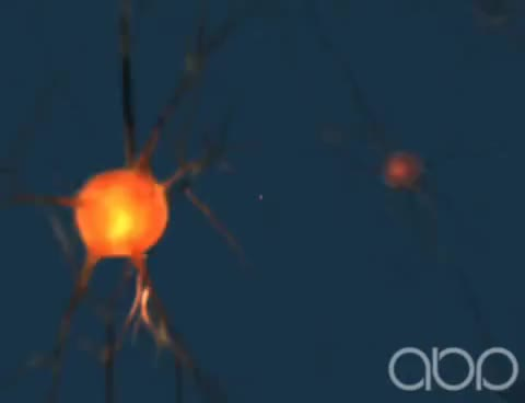 Watch and share Neuron - 3D Medical Animation || ABP © GIFs on Gfycat