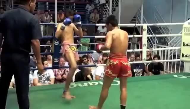 Watch Muay Thai Head Kick KO GIF on Gfycat. Discover more Head, Kick, Muay, Thai GIFs on Gfycat