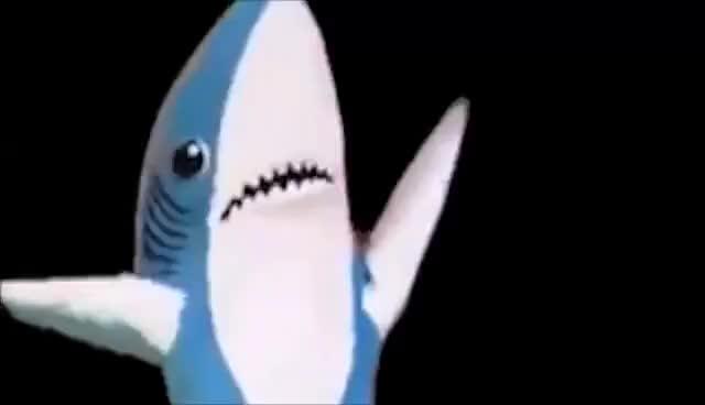 Watch and share Sharky BastiGHG GIFs on Gfycat
