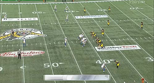 Watch and share Tim Horton's Field GIFs and Blue Bombers GIFs by Archley on Gfycat