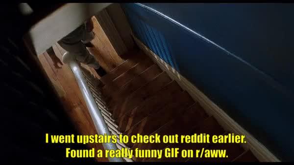 Watch and share Robin Williams GIFs and Matt Damon GIFs on Gfycat