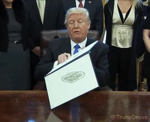 Watch the_donald me_irl GIF on Gfycat. Discover more donald trump GIFs on Gfycat