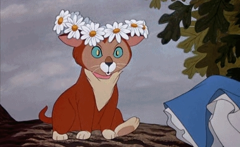 Alice In Wonderland, AliceInWonderland, Disney, Flowers Photography, Vintage cartoon, alice, alice gif, alice in wonderland gif, alice in wonderland quotes, book, books, boy, cat, cheshire cat, cute, disney movie, fairytale, floral, flower, flower gif, flowers, flowers gif, gif, gifs, girl, omg, story, sweet, twinkleestar07, vintage, I'm a Dreamer ^_^ GIFs
