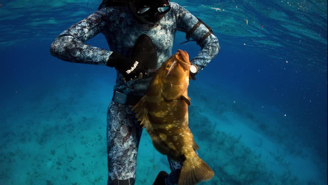 riffe, scuba, sea, Scuba Parallax 1 GIFs