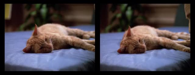 Watch and share Crossview GIFs and Data GIFs on Gfycat