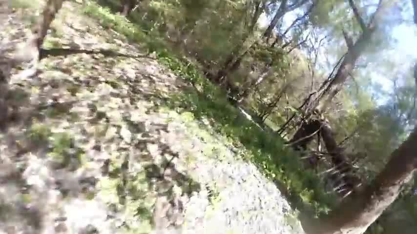 fpv, fpvracing, quadcopters, MartyFlyzZz Forest Moon Bounce GIFs