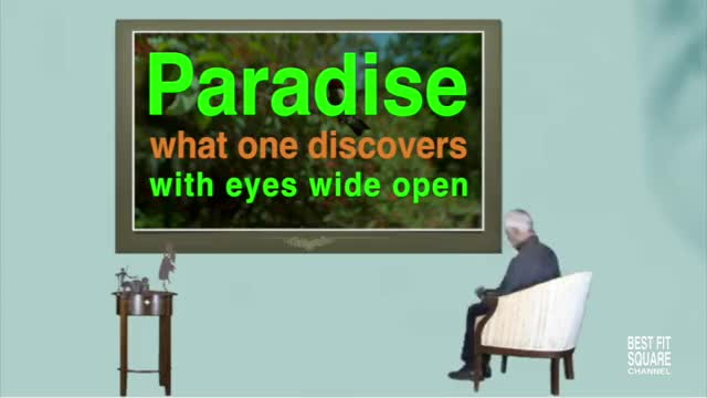 Watch and share Paradise GIFs by Manuel T. Ortega on Gfycat