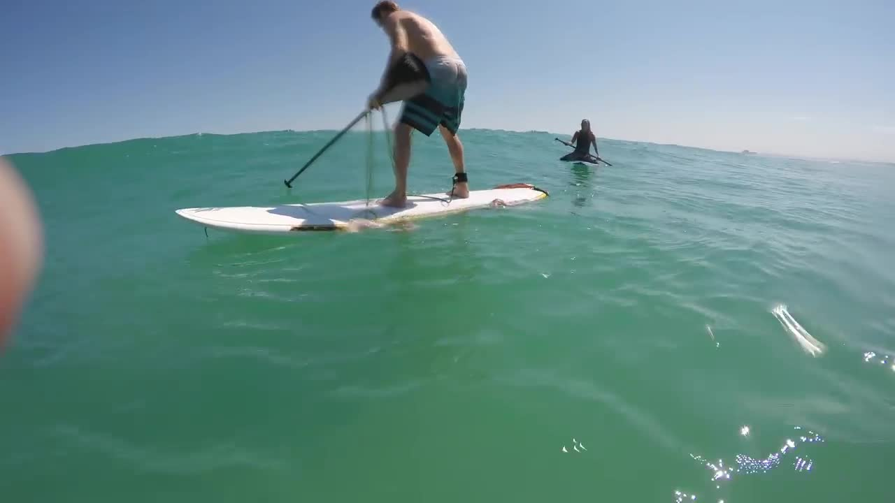 pmmesteamk3ys, Giant squid wraps its tentacles around my paddle board! GIFs