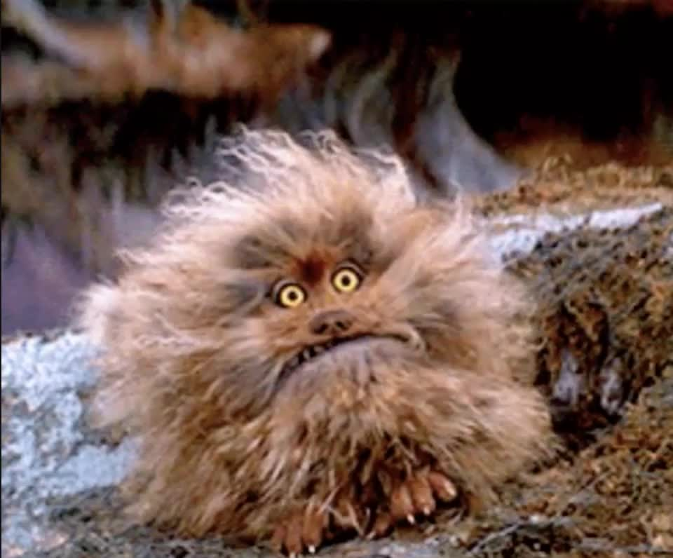 angry, cute creature, hangry, jim henson, tantrum,  GIFs