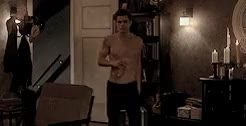 Watch B Davis GIF on Gfycat. Discover more stefan, tvd GIFs on Gfycat