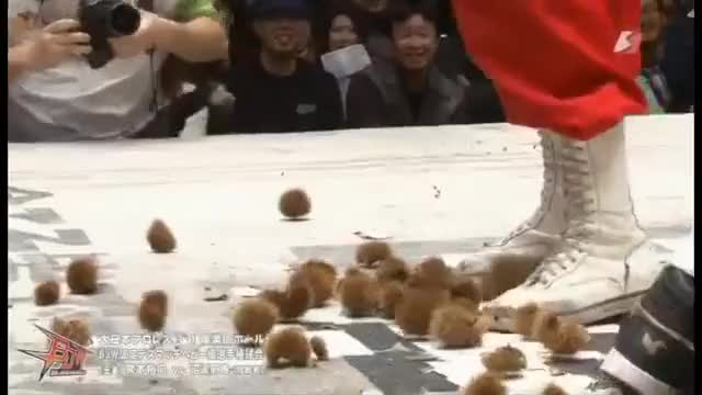 Watch Introducing the chestnut deathmatch (reddit) GIF on Gfycat. Discover more squaredcircle GIFs on Gfycat