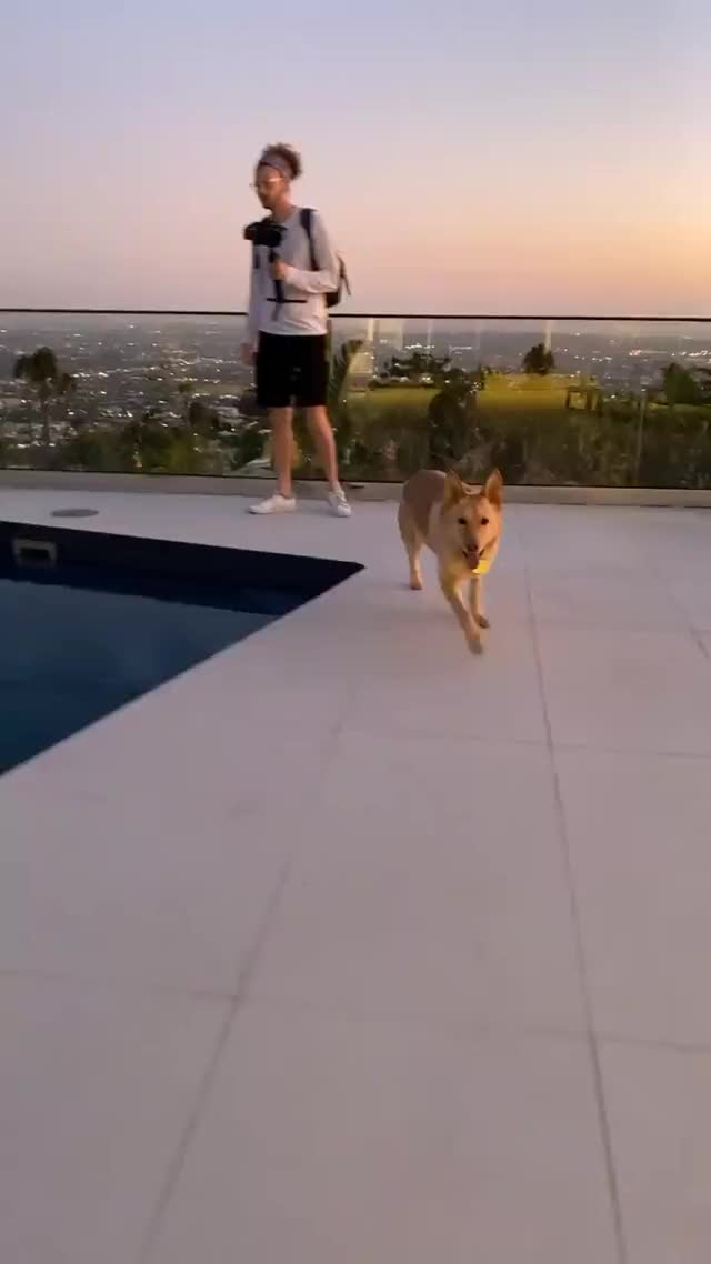 Watch and share Daisykeech - 2019-10-14 10:33:58:318 GIFs by Charles Carmichael on Gfycat