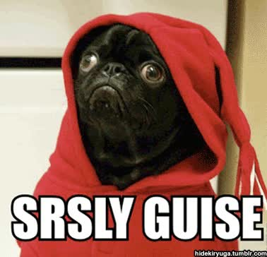 Watch and share Rezzing This Because We Seriously Need More Pugness In Here. GIFs on Gfycat