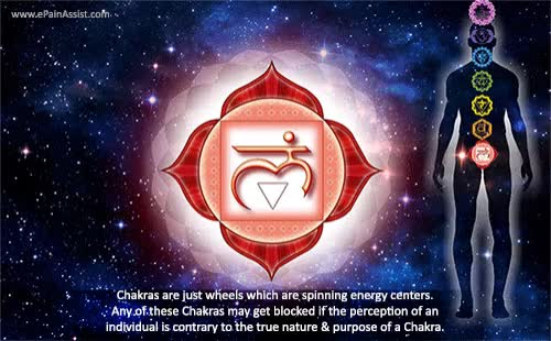 Watch and share Mooladhara Chakra GIFs and Root Chakra GIFs by ePainAssist.com on Gfycat