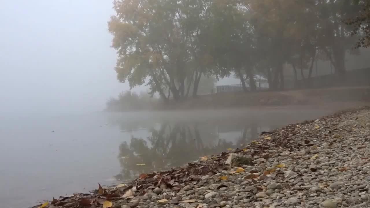 fog, foggy, nature, Fog GIFs