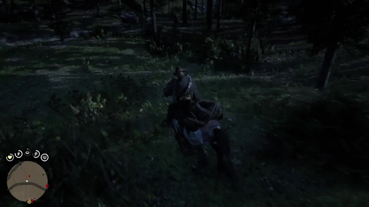 Red Dead Redemption 2_20181108190331 GIFs
