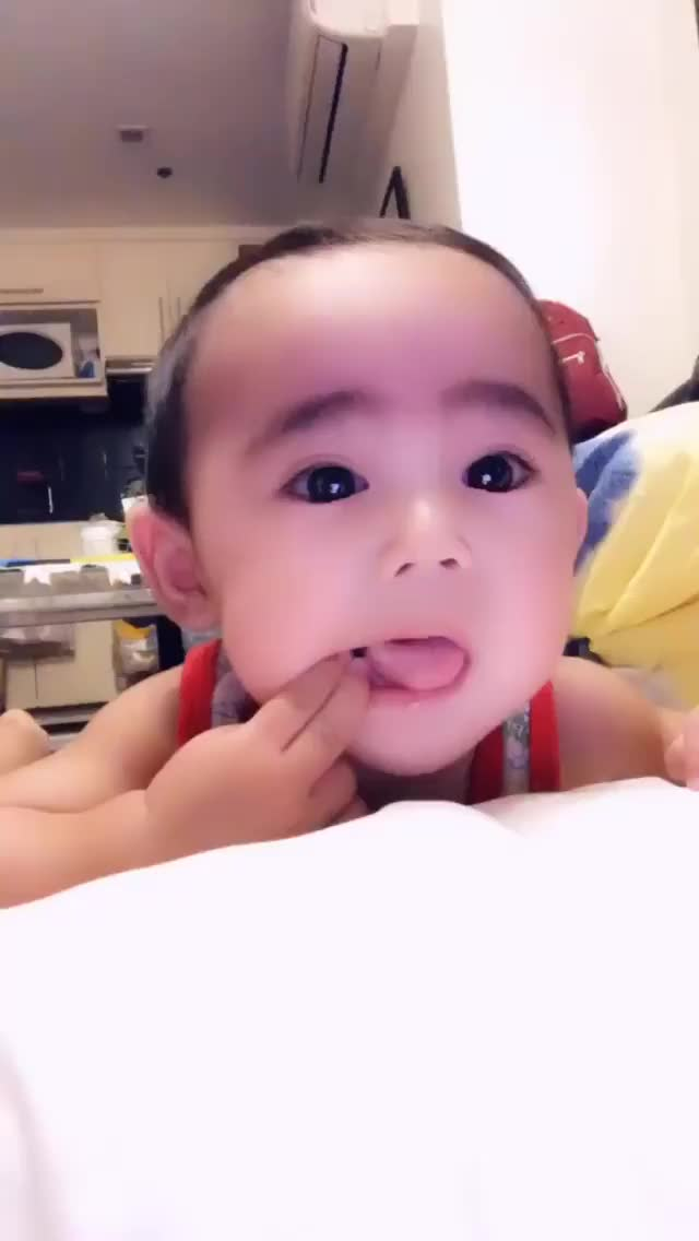 Watch and share Mimaiong 2019-01-11 11:36:11.886 GIFs by Pams Fruit Jam on Gfycat