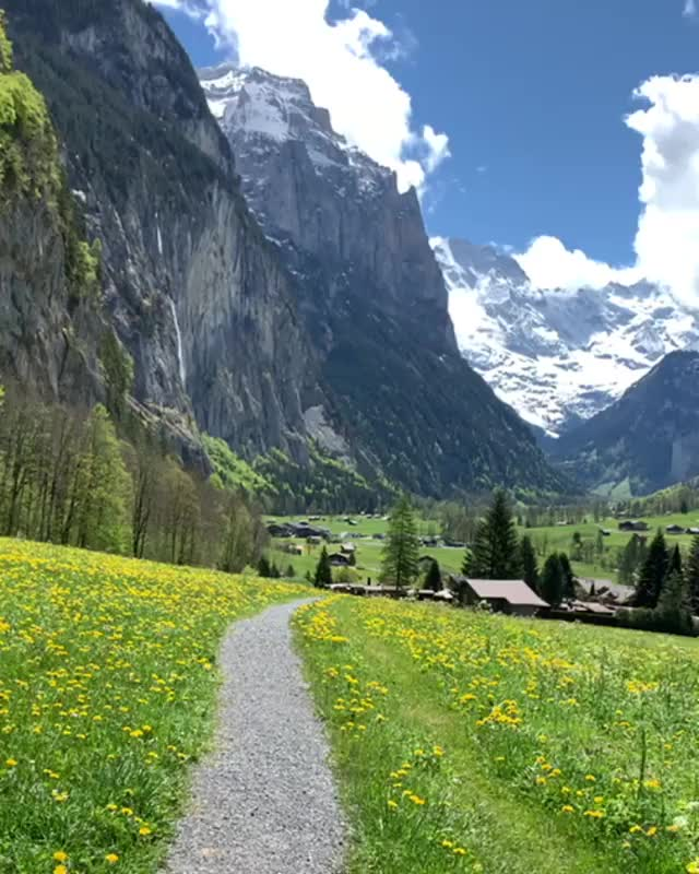 Watch and share Walking Your Dog In Lauterbrunnen, Switzerland GIFs by tothetenthpower on Gfycat