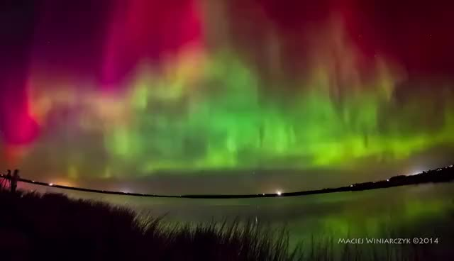 Watch Night of the Northern Lights GIF on Gfycat. Discover more related GIFs on Gfycat