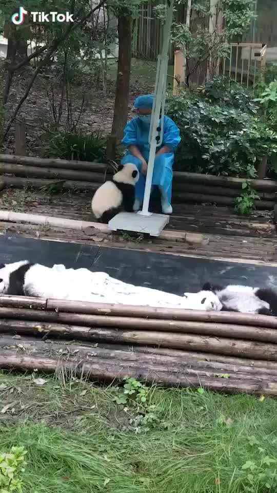 """Watch and share """"hug Me ,plz"""" GIFs by radiantemployment on Gfycat"""