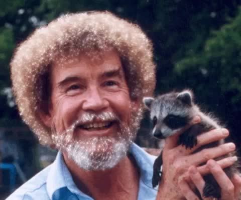 Watch and share Bob Ross GIFs and Racoon GIFs on Gfycat