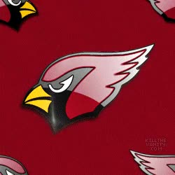 Watch this arizona cardinals GIF on Gfycat. Discover more related GIFs on Gfycat