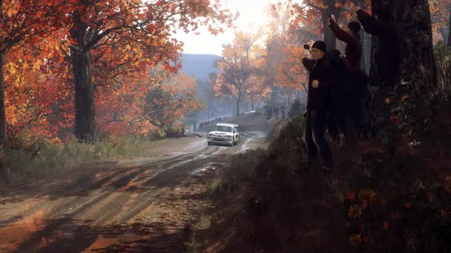 Watch Dirt Rally 2 Beauty GIF by Felipe Seixas (@czar66) on Gfycat. Discover more related GIFs on Gfycat