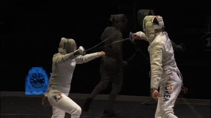 fencing,  GIFs