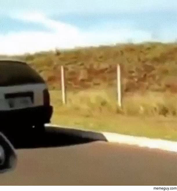 Watch No tire no problem GIF on Gfycat. Discover more related GIFs on Gfycat